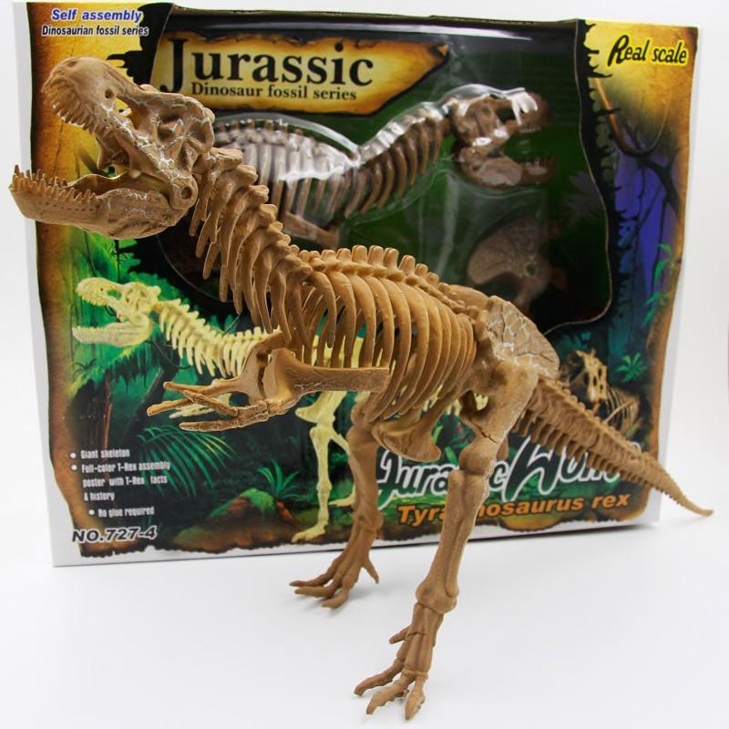 mô hình lắp ráp xương hoá thạch khủng long bạo chúa